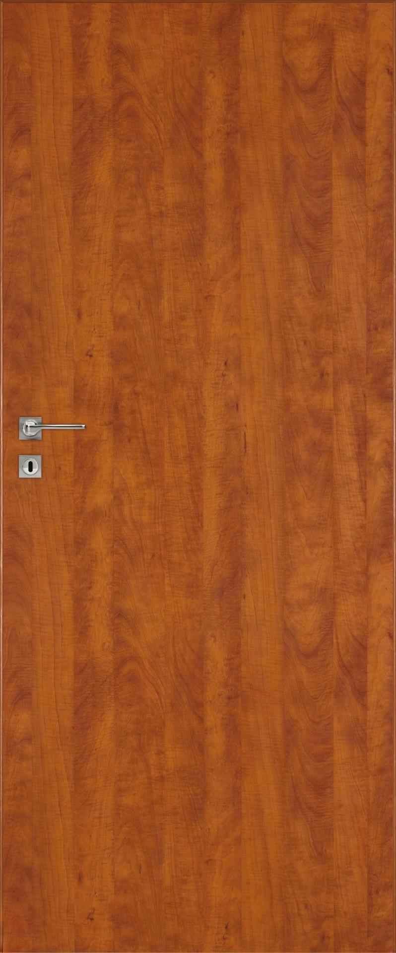 Dre dveře STANDARD 10